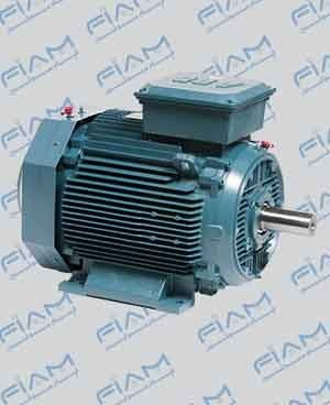 الکتروموتور TEFC معمولی (AC)